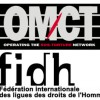 fidh omct1-300x265